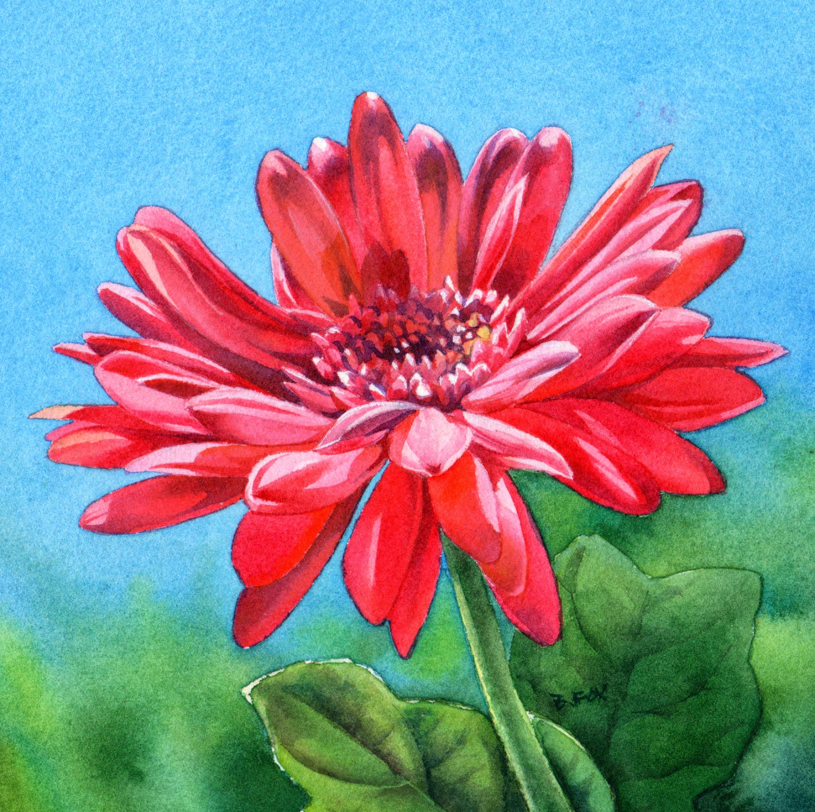 Barbara Fox Daily Paintings My Love Is Like A Red Red Daisy