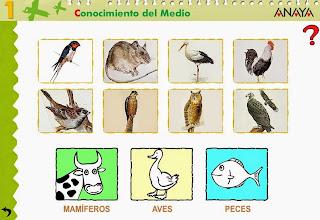 http://www.ceiploreto.es/sugerencias/A_1/Recursosdidacticos/PRIMERO/datos/03_cmedio/03_Recursos/actividades/2losAnimales/act7.htm