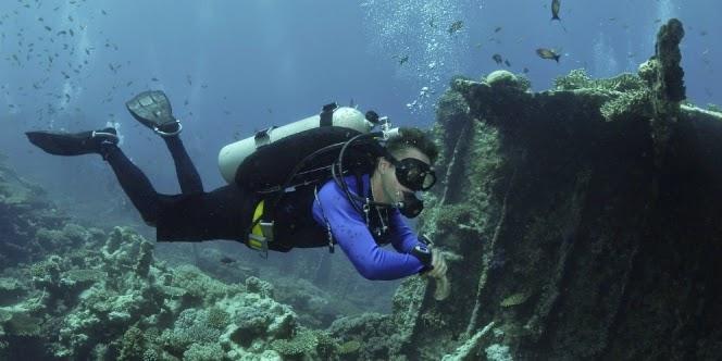 dasar laut