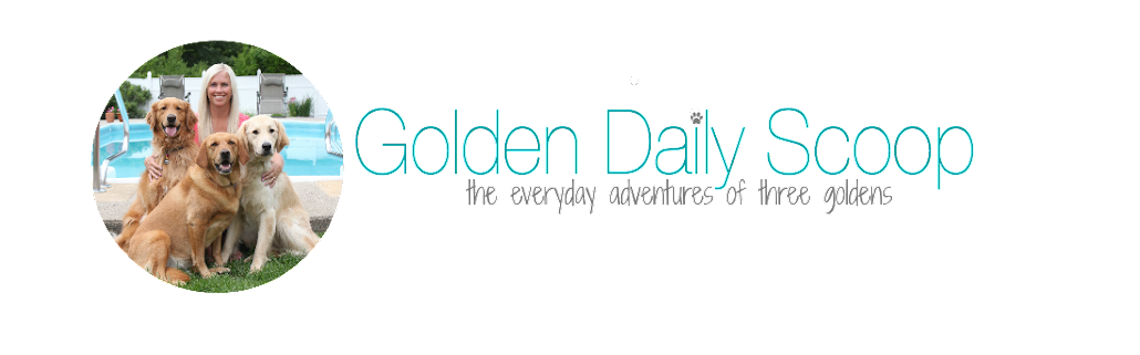 Golden Daily Scoop