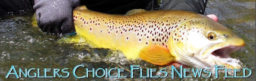 Anglers Choice Flies News Feed