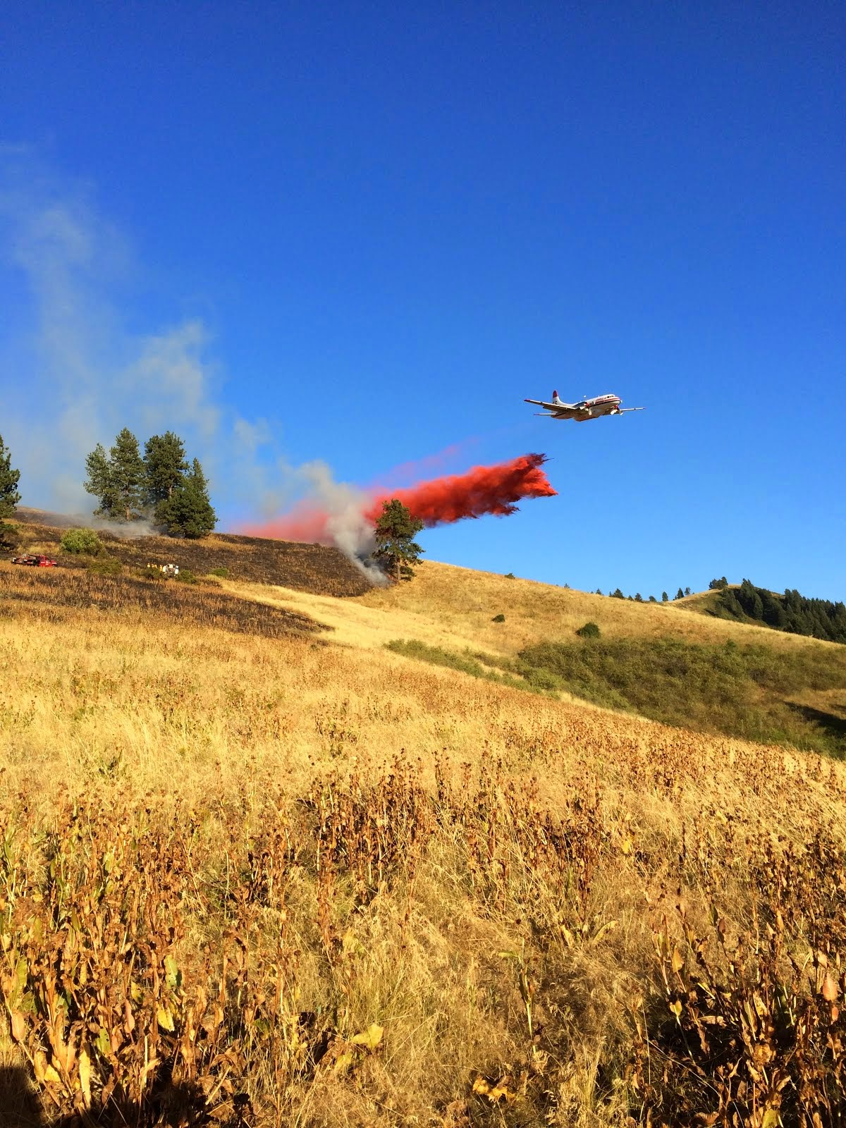 Stumbough Ridge Fire