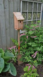 DIY, Casa para Aves con Base de Pala