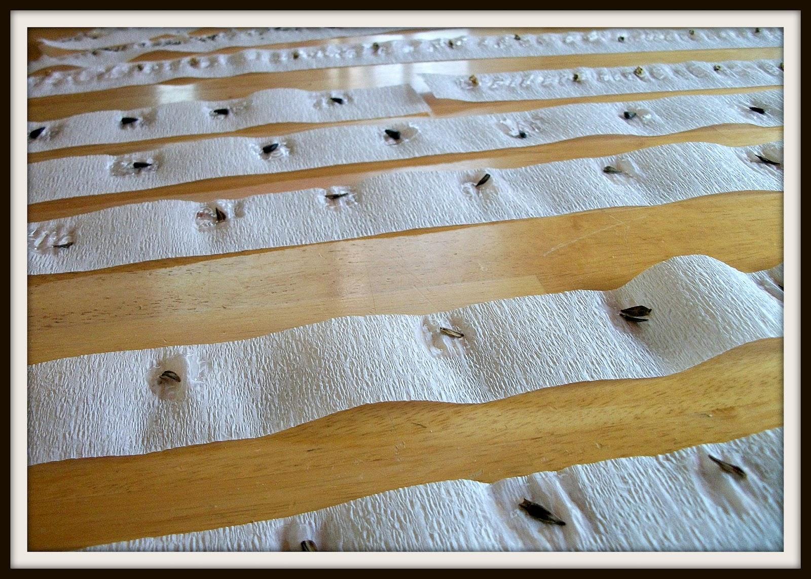 weasinart: How Tuesday: DIY Seed Tape