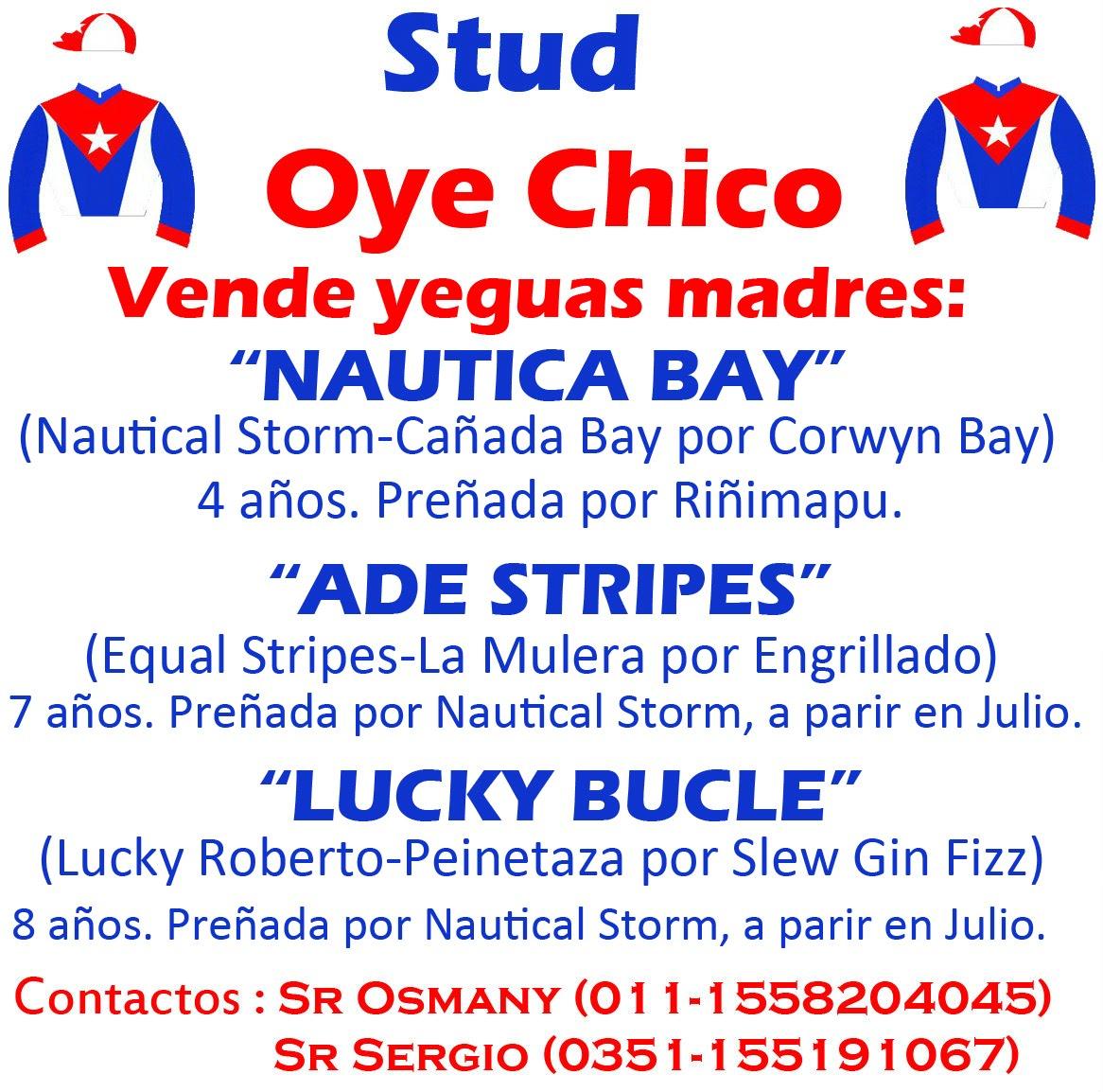 OYE CHICO 3