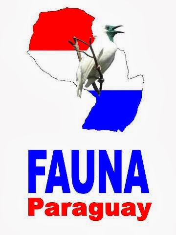 Fauna Paraguay