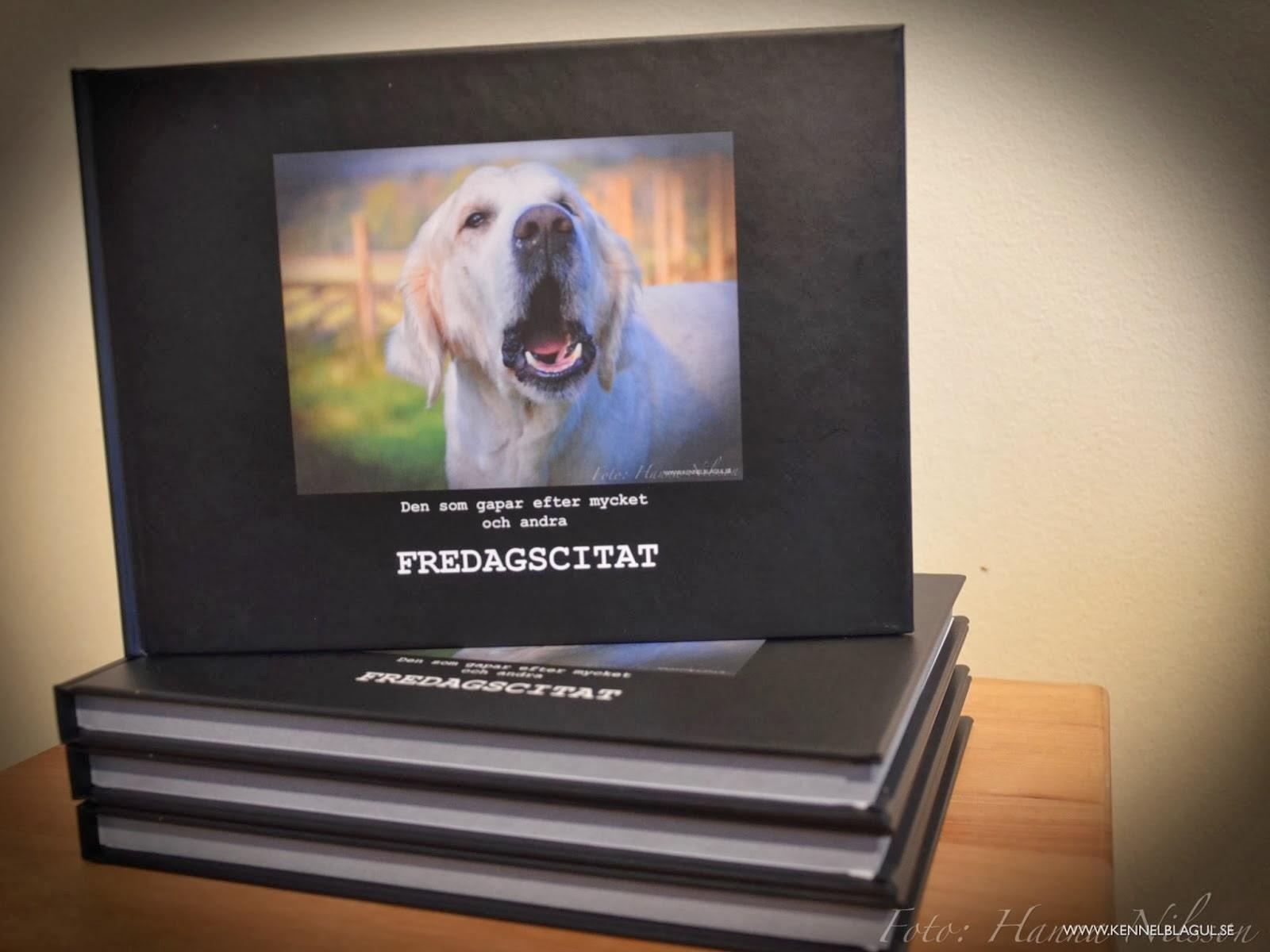 FREDAGSCITAT - köp boken här!