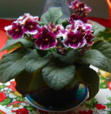 *Para uma menina com uma flor* Vinicius de Moraes