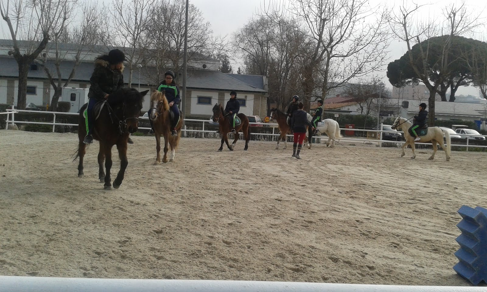 Blog Del Ceip Azor N De Madrid Equitaci N En El Club De