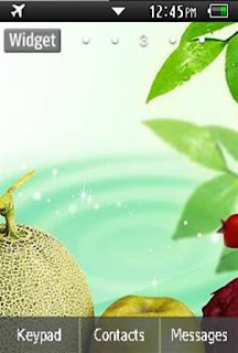 General Healthy, Vegetables, Fruits Samsung Corby 2 Theme 2 Wallpaper