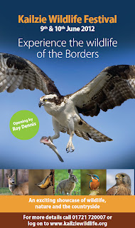 Kailzie wildlife festival poster