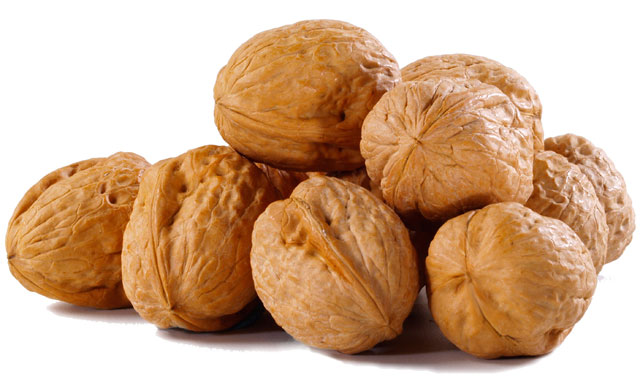 Dr. Mohan's Diabetes Specialities Centre: HEALTH BENEFITS OF WALNUTS640 x 380 jpeg 53kB