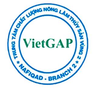 logo VIETGAP