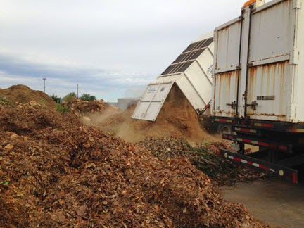 Trucks unloading leaves at the Transfer Station