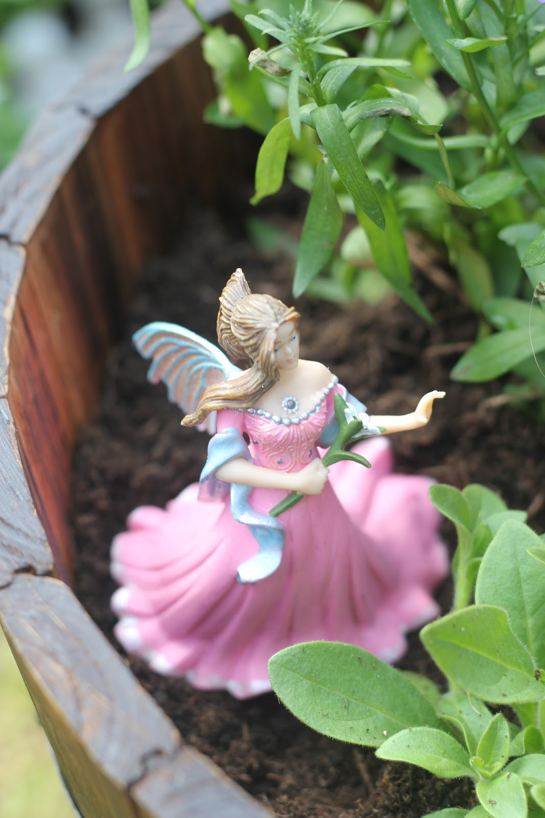 Making a Fairy Garden The Imagination Tree