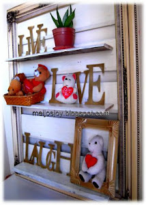 Old Frame into display shelf