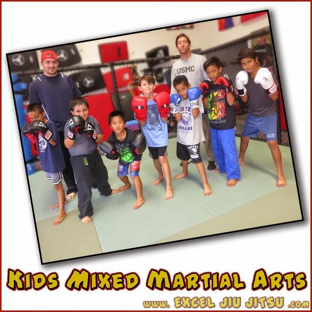 Kettlebell Training For Mixed Martial Arts Brazilian Jiu: Excel Jiu Jitsu MMA & Fitness: IBJJF Brazilian Jiu Jitsu