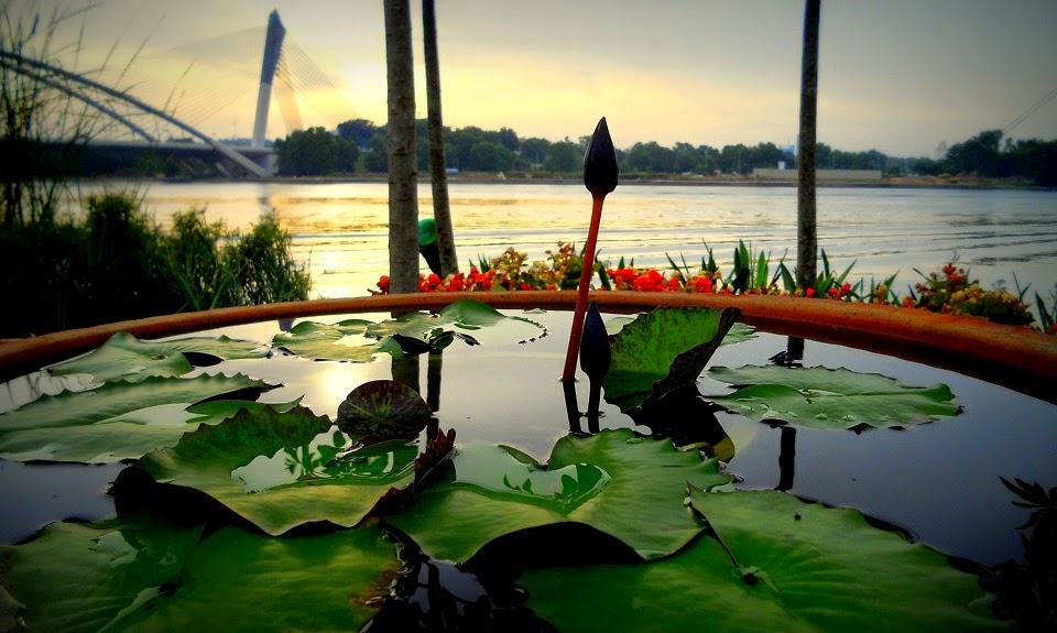 Gambar Sepetang di Festival Bunga Dan Taman Floria Putrajaya 2014