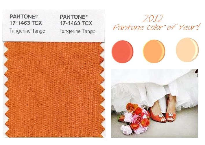 bloomflora tangerine tango 2012 pantone color of the year. Black Bedroom Furniture Sets. Home Design Ideas
