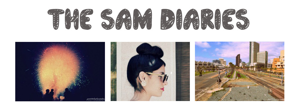 The Sam Diaries
