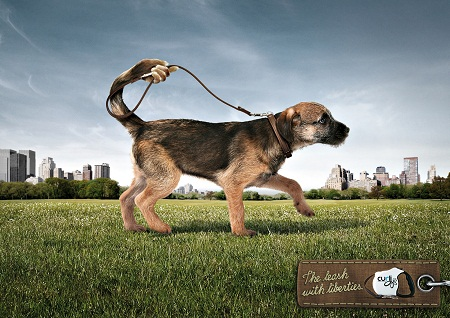 Curli amusing and humorous print ads