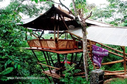 Cabaña de bambú entre árboles