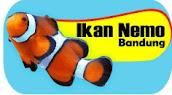 ikan nemo bandung