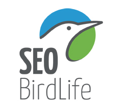 VIDEO PRESENTACION DE SEO/BirdLife