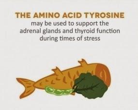 tyrosine benefits weight loss
