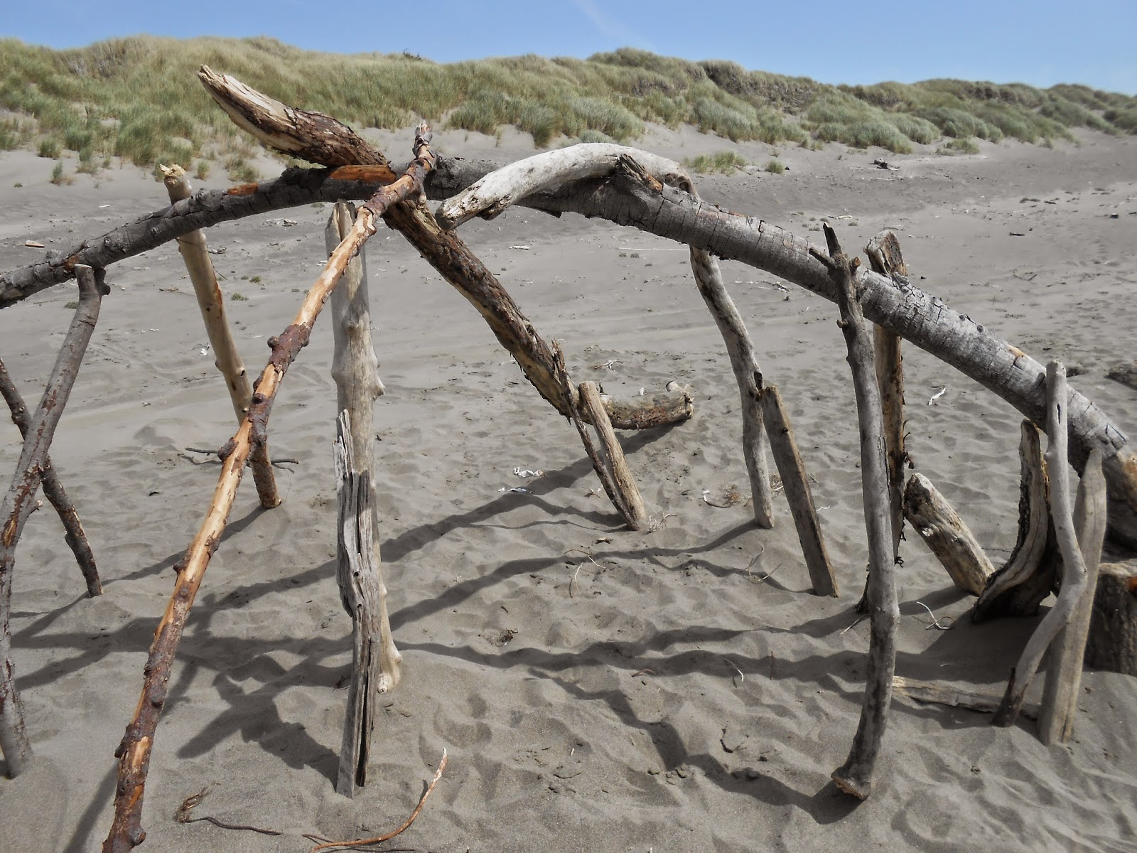 driftwood, beach, photography, spiritual awakening, spiritual belief, unstable