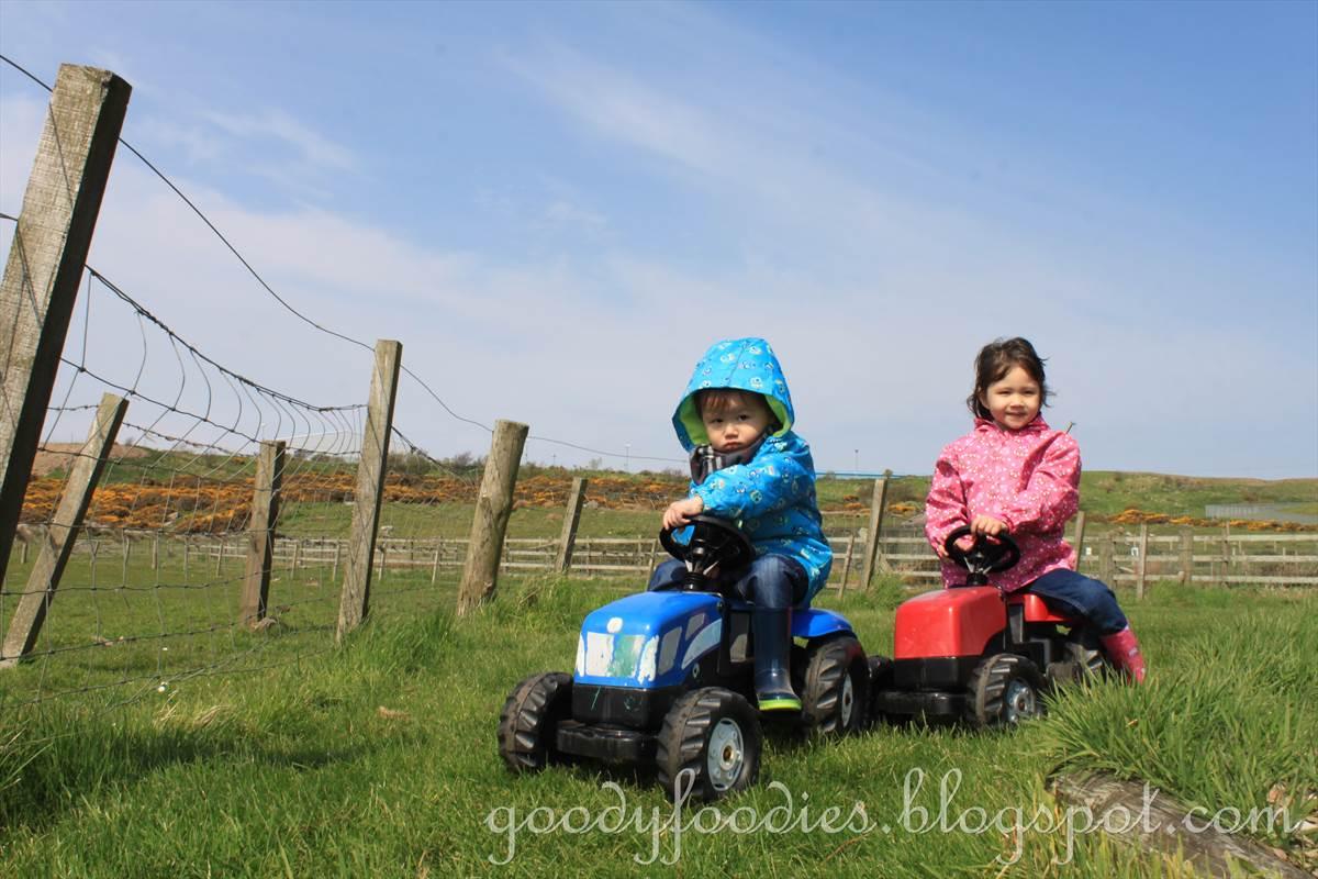 goodyfoodies kids fun doonies farm aberdeen scotland