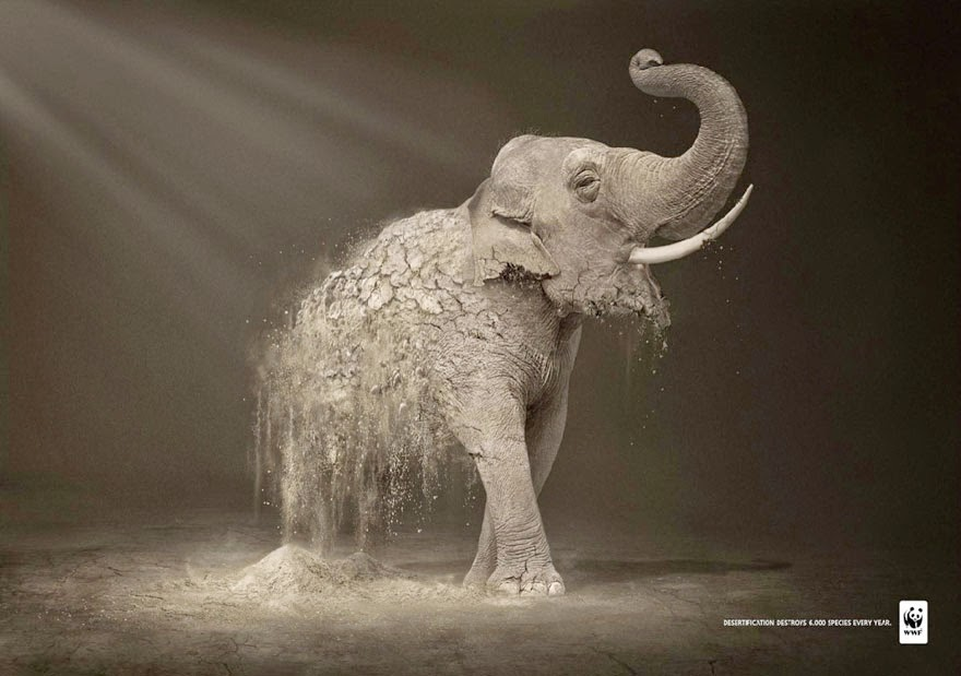 WWF: Desertification Destroys 6,000 Species Every Year - 33 Powerful Animal Ad Campaigns That Tell The Uncomfortable Truth
