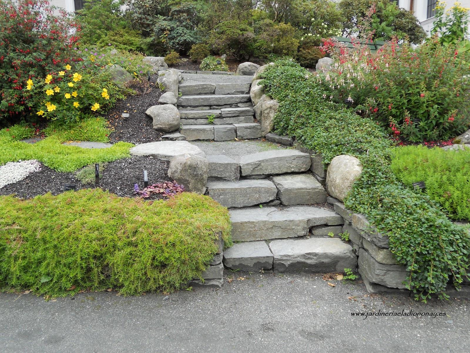 Jardineria eladio nonay escaleras como parte del jard n for Escaleras para caminar fuera del jardin