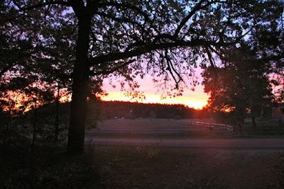 tomorrow brings a new dawn