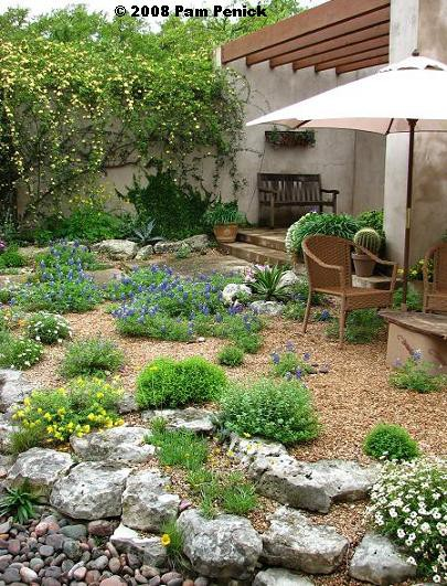 Xeriscape Small Backyard : amazing casual easy going xeriscaped backyard