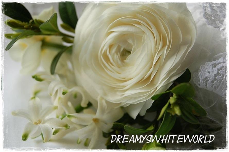 dreamyswhiteworld