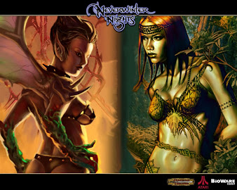 #32 Neverwinter Nights Wallpaper