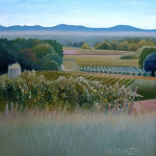 Современный американский художник. Catherine Twomey