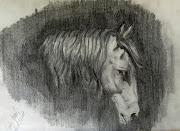 Cabeza de caballoDibujo a lápiz. Publicado por Carlos Enrique García .