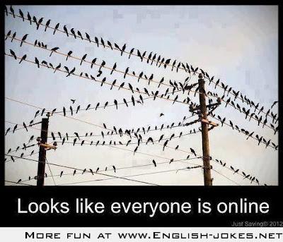 Looks like everyone is online