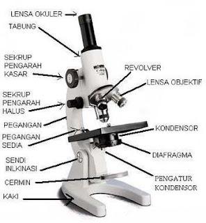 Mikroskop dan Fungsinya