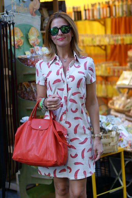 Sorrento, red hot chili peppers dress, happiness dress, Longchamp bag, Fashion and Cookies, fashion blogger