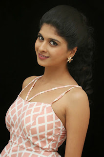 Actress Naveena Latest Pictures in Mini Skirt at Ice Cream 2 Press Meet 006