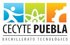 Colegio de Estudios Científicos y Tecnológicos del Estado de Puebla.