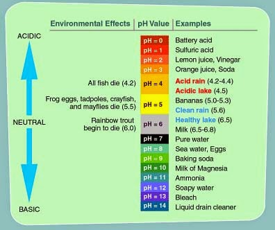 Acid, acidic, acidic water, water ph, alkaline water, ionized water