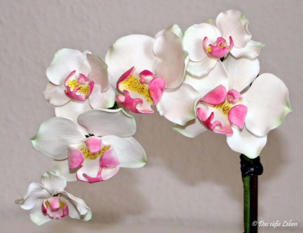 rezept orchideentopf das s e leben. Black Bedroom Furniture Sets. Home Design Ideas
