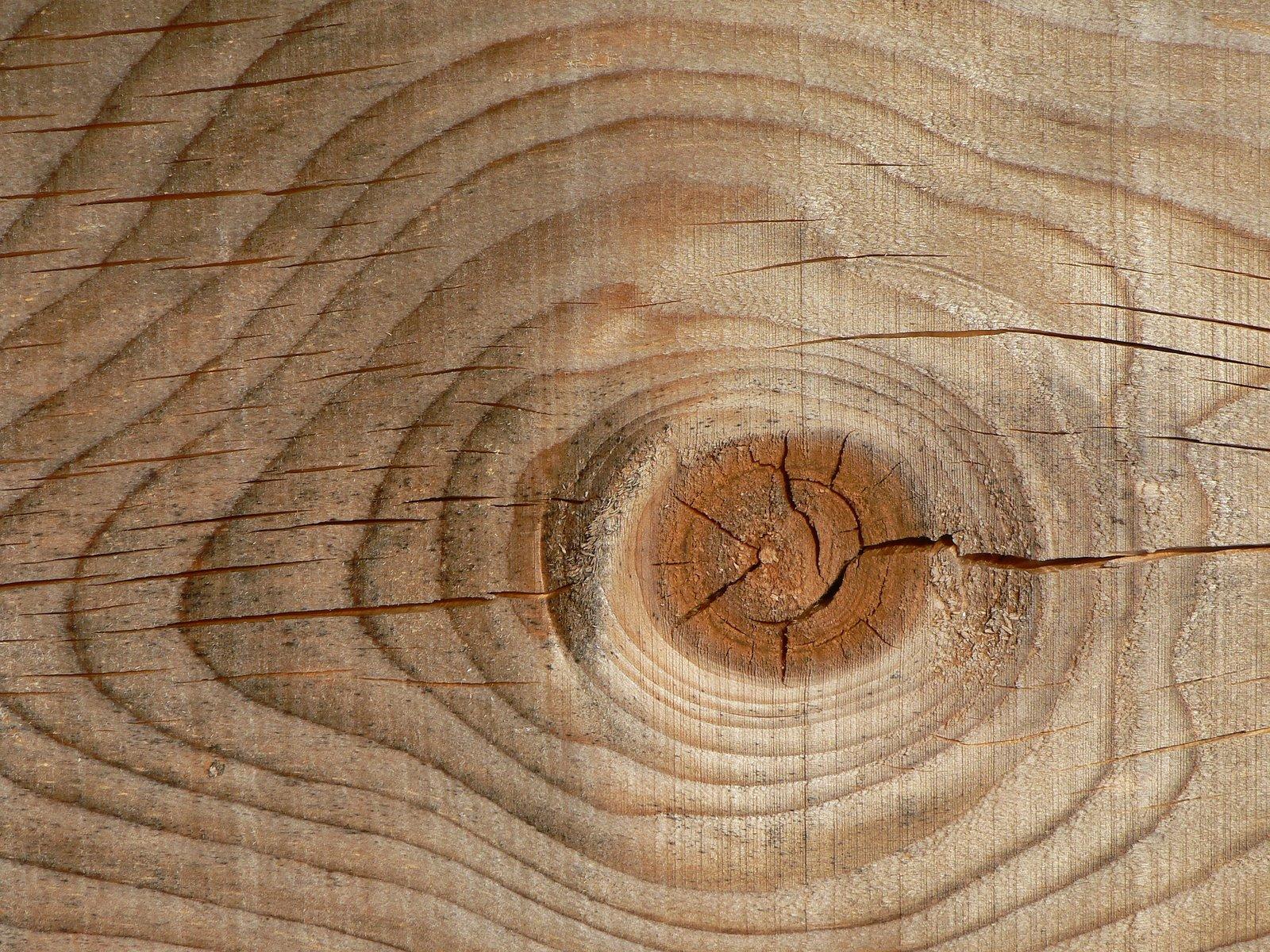 Arquirehab la madera el material sostenible for Fotos en madera