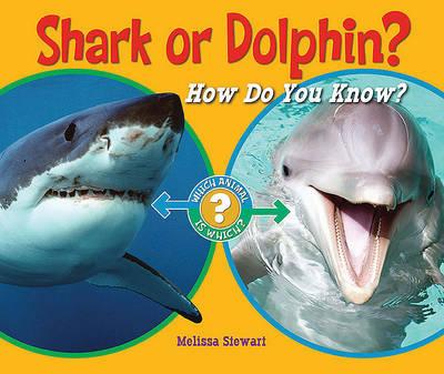 How to do a 4 paragrah essay on dolphins