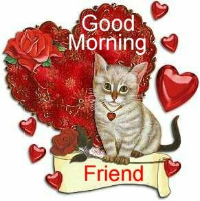 Good morning greetings gud morning cards pictures images pics with quotes good morning funny pictures good morning funny facebook pictures good morning facebook wallpapers greeting cards good morning quotes m4hsunfo