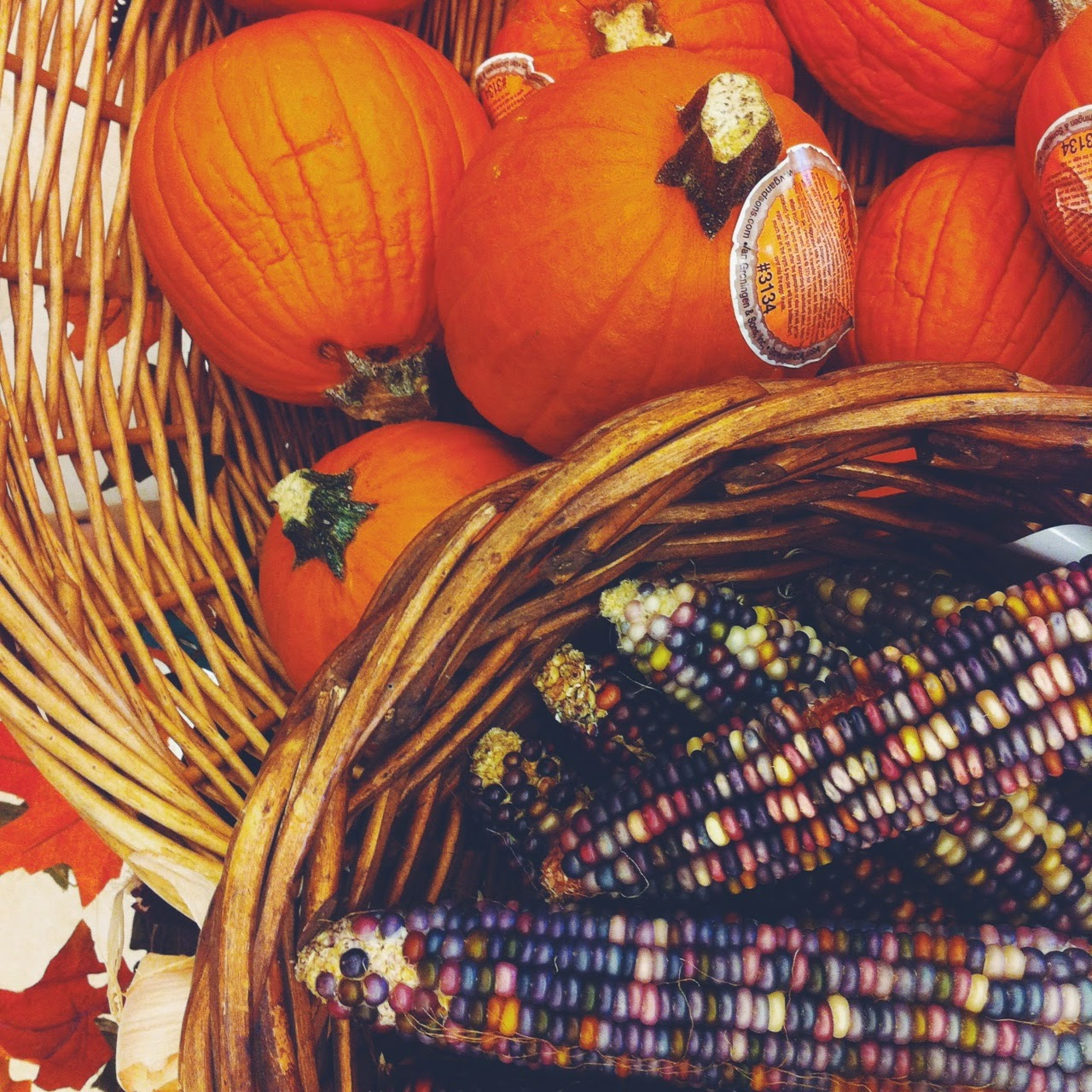 pumpkin season, nature-inspired decoration, fall inspiration, tlv birdie blog, ecofriendly, slow living lifestyle blog, country living